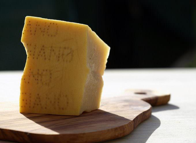 """Grana e Parmigiano – Ferrazzi: """"Meno tasse sui produttori"""""""