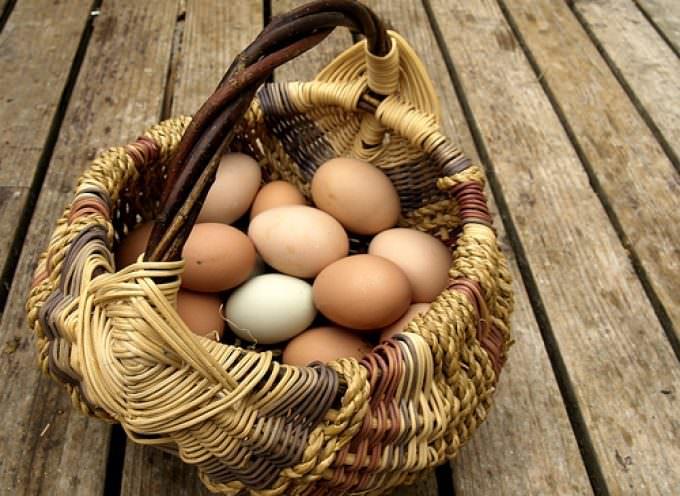 Pasqua all'insegna delle uova biologiche