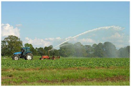 Agricoltura: Il Piano per la tutela delle acque penalizza il settore