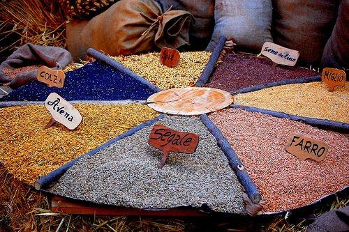 Ue: I cerealicoltori chiedono l'intervento pubblico