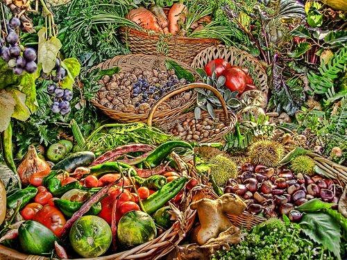 Abbondanza e varietà: così frutta e verdura contro il tumore ai polmoni