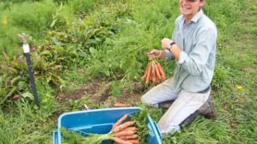 Pacchetto giovani: opportunità per rigenerare l'agricoltura pugliese