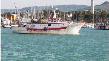 Bio e Mare: nasce in Toscana la coop di pesca rosa