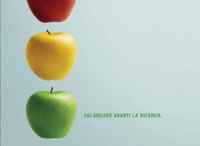 """Torna """"Una mela per la vita"""": due giorni in piazza contro la sclerosi multipla"""