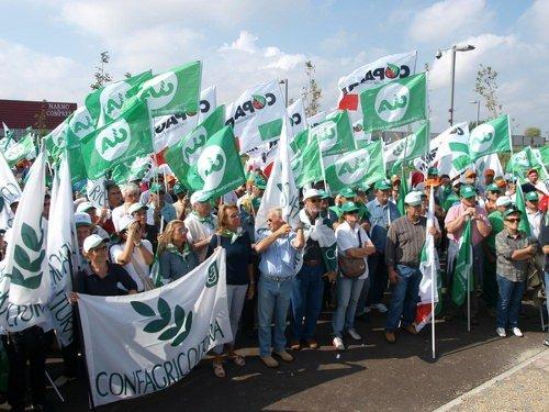 Protesta agricoltori in piazza a Roma, Soldà chiede tutela