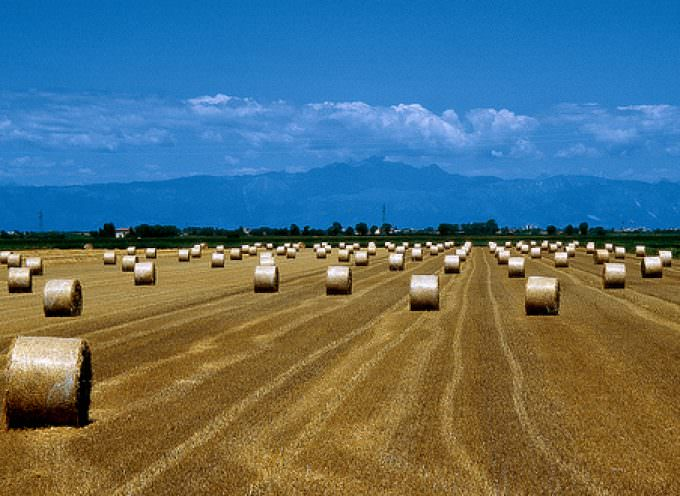 Alluvioni e taglio fondi UE per l'agricoltura: A rischio l'intero comparto