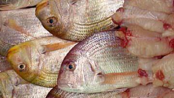 Pesce: protegge il cuore, ma solo se mangiato in grandi quantità