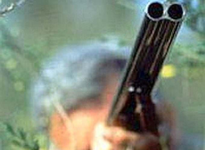 WWF: No alla deregulation della caccia!