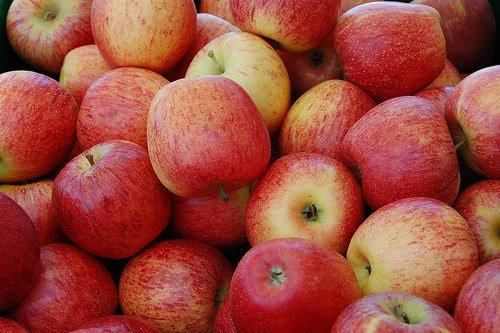 Mele, i cambiamenti del clima le rendono meno croccanti e più dolci