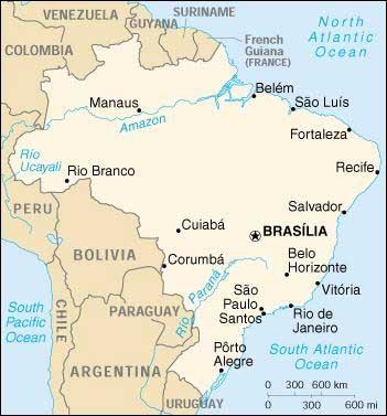 Wine Show: Grande degustazione di vini brasiliani