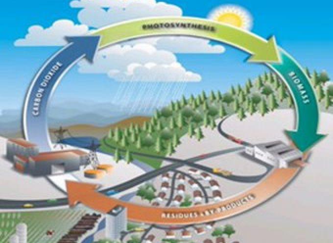 Premio Sviluppo sostenibile 2009, la green economy si fa strada in Italia