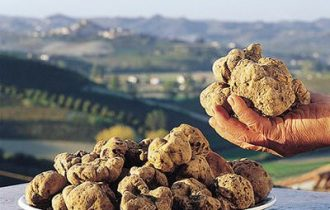 Toscana. San Miniato offre il primo Master del tartufo