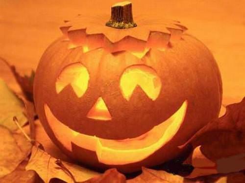 Halloween: per le zucche crollo dei prezzi sui campi, ma le vendite s'annunciano in calo