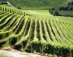 Si è spenta Eva Vernazza, la signora della viticoltura eroica