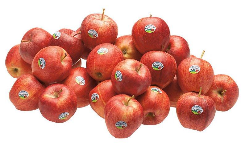 Gala Val Venosta: la mela sul gradino più alto del podio