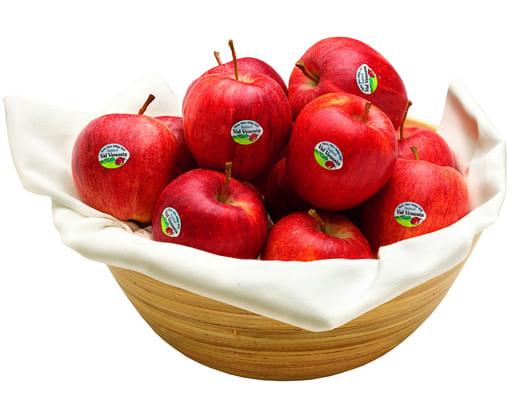 Con le mele bio della Val Venosta ora anche il loro vademecum