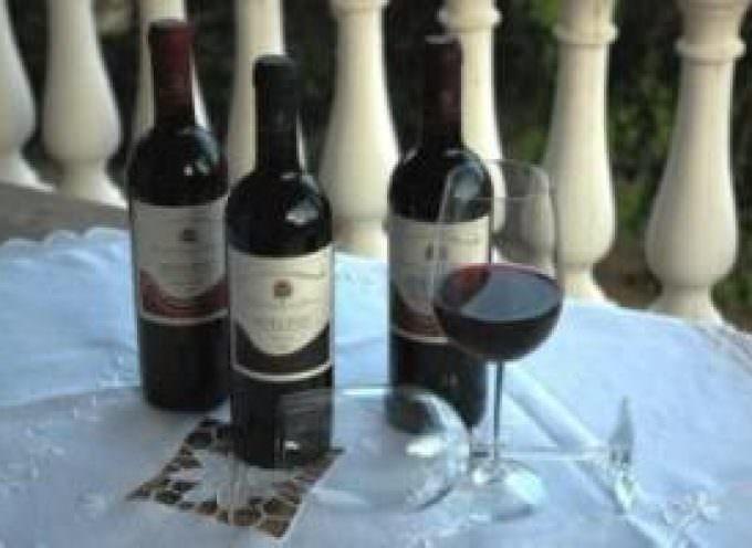 Vini calabresi: tanta qualità e schiettezza, proprio come tradizione millenaria richiede!!