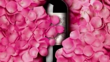 Veneto: A Verona l'anteprima del vino Novello 2009