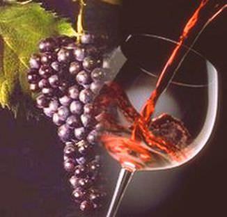 Made in Italy: vino Novello al via, batte di 2 settimane Beaujolais