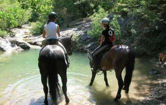 A cavallo per la Tuscia, al via le ippovie certificate