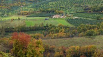 """""""Bandiera verde agricoltura 2009"""", un premio alla qualità che riscopre e valorizza il territorio rurale"""