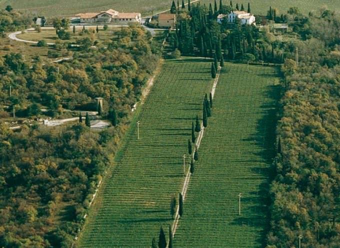 Sagrado: degustazioni nell'Antica Barchessa di Castelvecchio