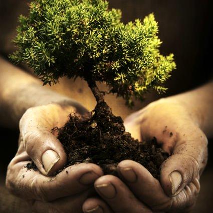 Giornata Mondiale della Terra: Agricoltura biologica per tutelare la biodiversità
