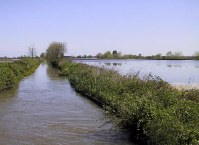 Piemonte: Riattivazione delle rogge per la coltivazione del riso