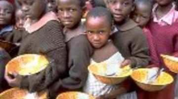 Fao: Allarme crisi alimentare, servono almeno 44 miliardi di dollari l'anno