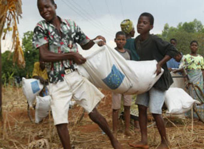 Fao: decisivo il ruolo dei piccoli agricoltori per contrastare fame e povertà