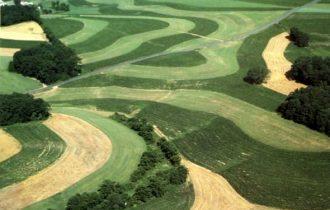 Contro la crisi dell'agricoltura serve progettualità non analisi