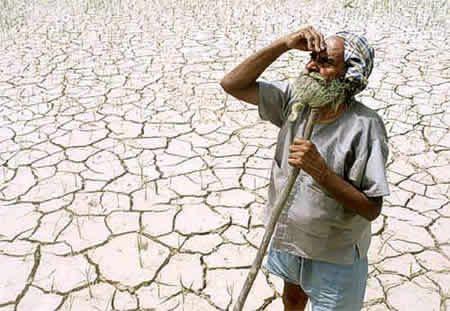 FAO: Coldiretti, razziati 15 mln di ettari