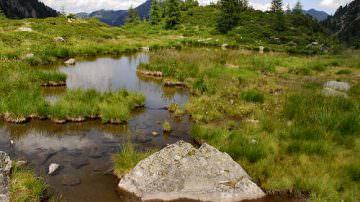 Fra i boschi del Ticino nasce l'oasi dell'energia verde