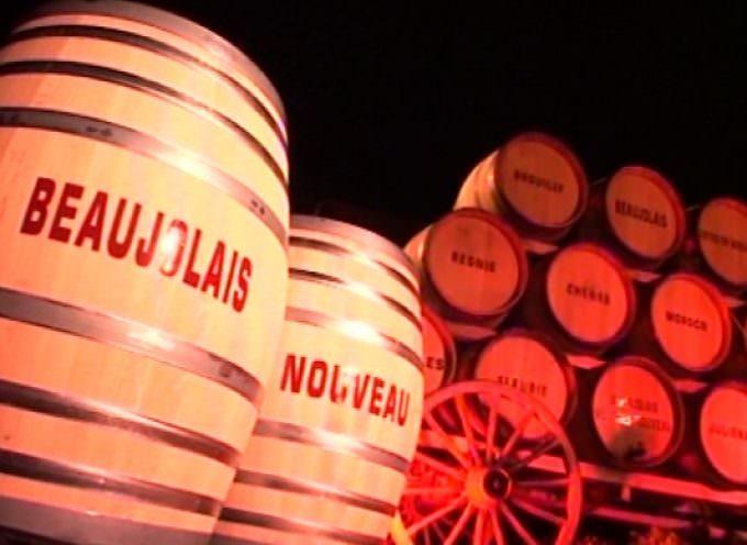 Consumi: Coldiretti, si stappa Beaujolais ma in Italia vince Novello