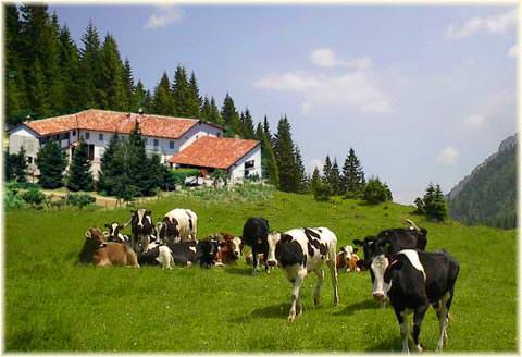 Gardini soddisfatto per la posizione Galan al Consiglio dei Ministri dell'Agricoltura Ue