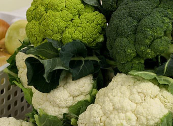 A Caltagirone (CT) arriva il mercato settimanale degli agricoltori