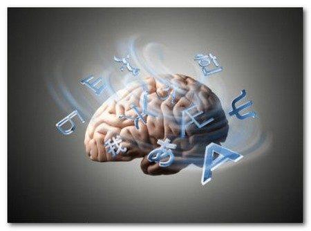 Cervello: una proteina cancella i vecchi ricordi