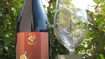 Onorio 2006 rosso Doc Colli Maceratesi si aggiudica il premio Top Hundred 2009