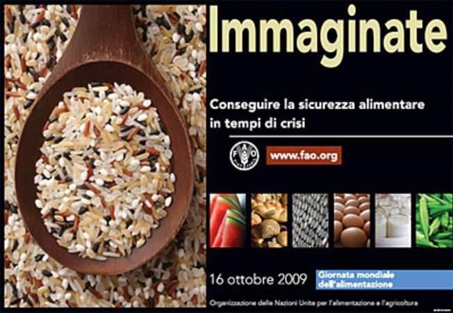 Workshop sull'Educazione alimentare nel terzo mondo durante la Giornata Mondiale dell'Alimentazione 2009