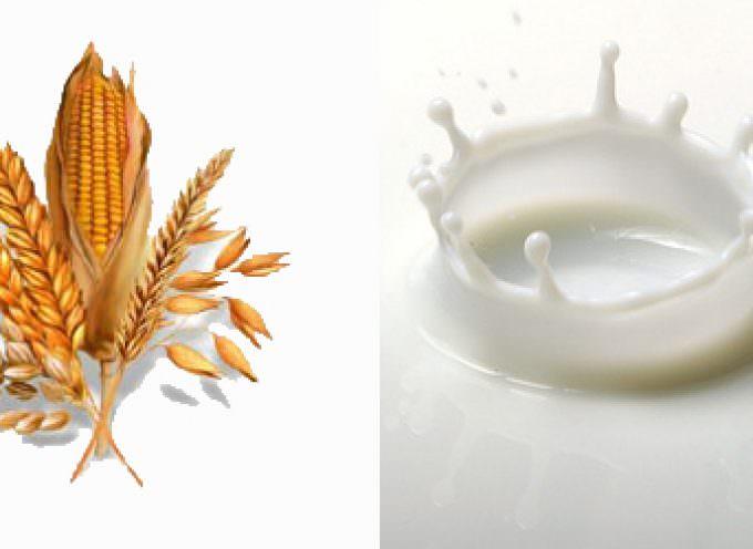 Prezzi: Coldiretti, grano e latte ai minimi da oltre venti anni