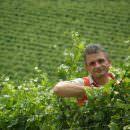 Agricoltura biodinamica, miglior risposta ai cambiamenti del clima