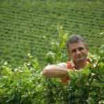 L'economia della Natura: Convegno internazionale di Agricoltura biodinamica