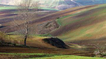 Con sempre meno paesaggio e terra per l'agricoltura nessuna prospettiva di crescita per il turismo
