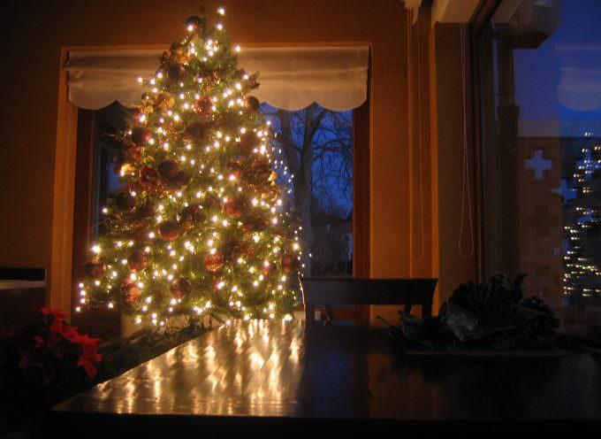 Copenhagen: Coldiretti presenta l'albero di Natale salva clima