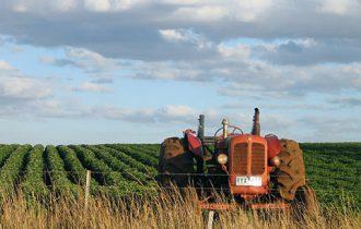 Gli agricoltori della Cia ricevuti dal presidente Napolitano