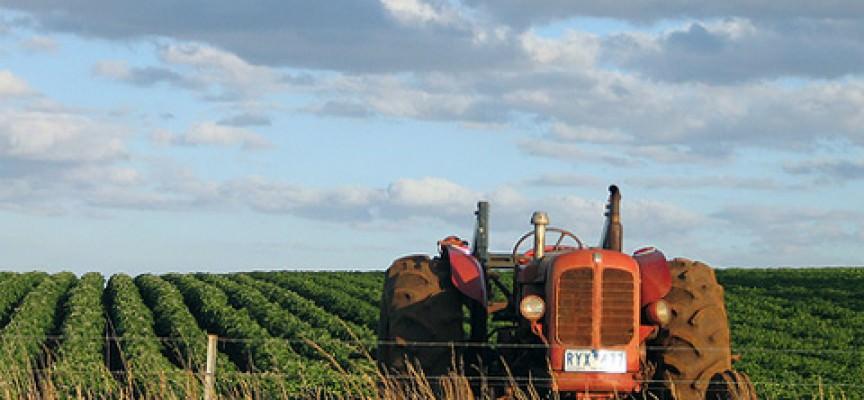 Unione Europea, al via le nuove norme sull'agricoltura