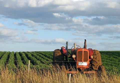"""""""Inserire specifica misura per la crescita verde nella nuova politica di sviluppo rurale"""""""
