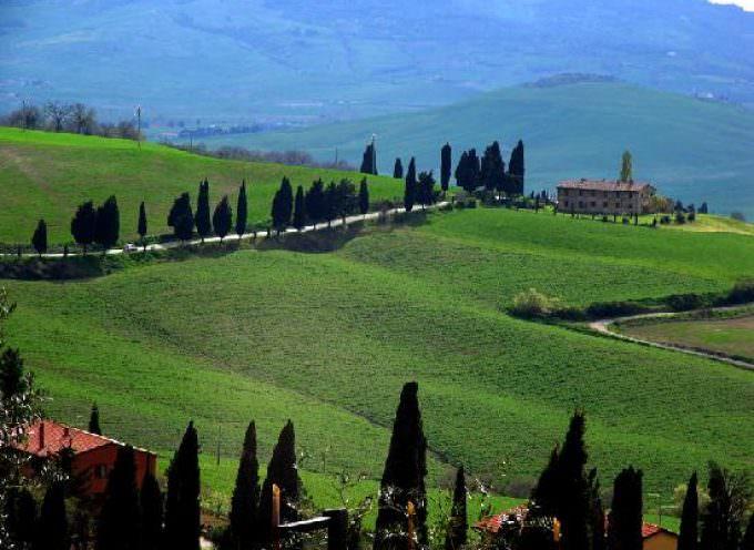 Divino Tuscany: viaggio in Toscana per conoscere il vino