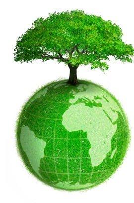 """Lazio: """"Green economy, un'opportunità per la Tuscia"""" convegno in 3 parti per il rilancio del territorio"""