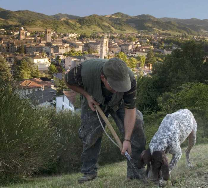 Basilicata: I tartuficoltori lanciano un grido d'allarme